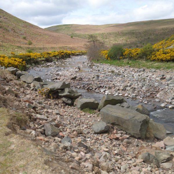 River Breamish