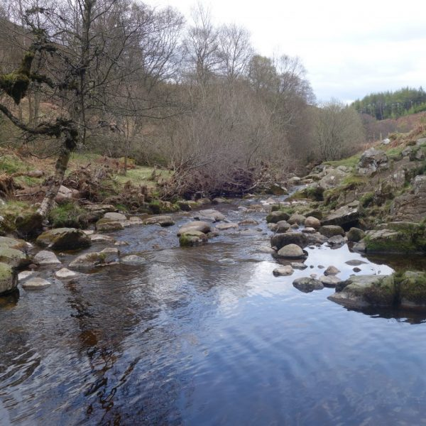 Linhope Spout, River Breamish