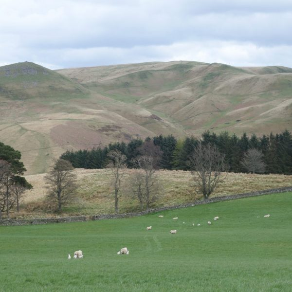 Views from Woden Law, Cheviot Hills, Northumberland