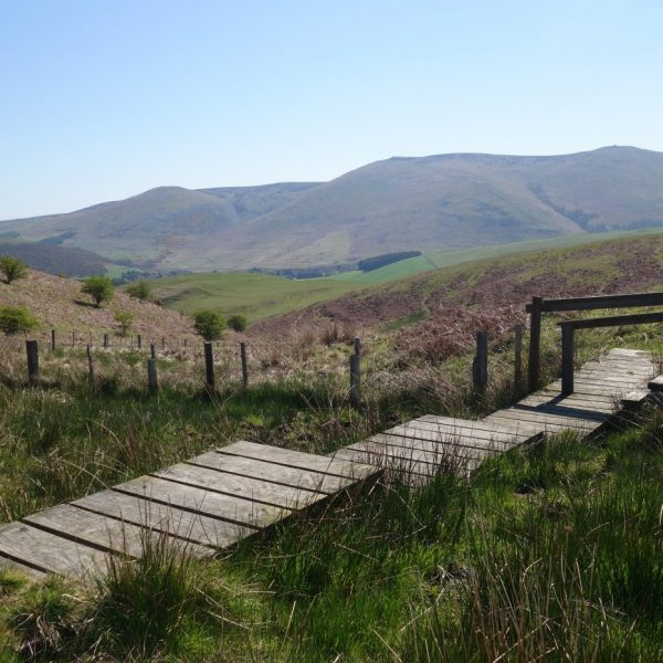 holiday let northumberland
