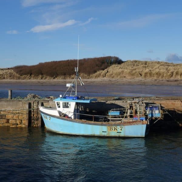 Karen's Kottages Northumberland - holiday cottage - Beadnell