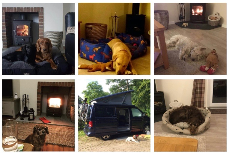 karen's cottages - stanegate cottage - drakestone cottage - VW camper van - northumberland - dog friendly