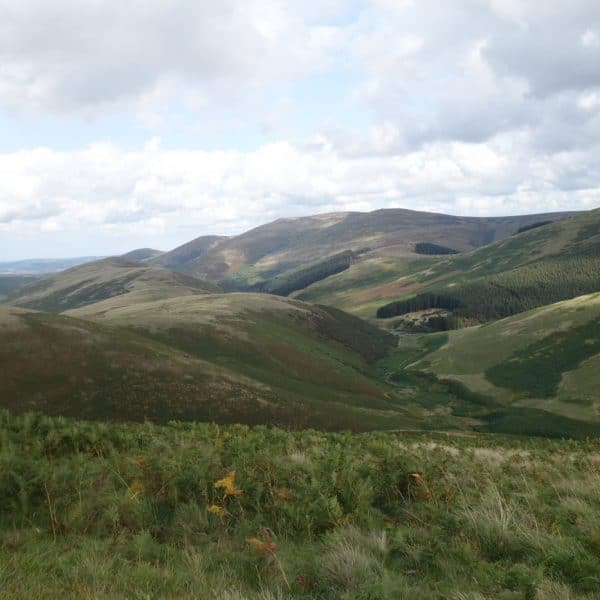Karens kottages northumberland self catering holiday cottages cheviot hills