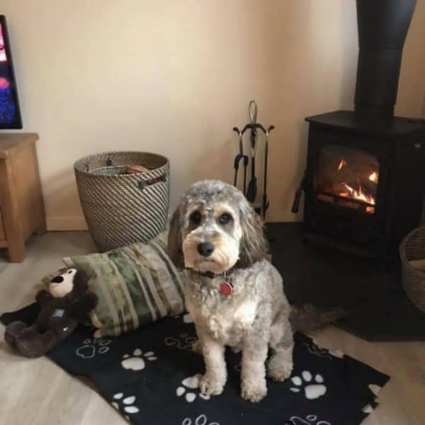 karens kottages - dog friendly self catering holiday cottage accommodation in Northumberland - Drakestone Cottage - Stanegate Cottage
