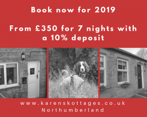 karens kottages - northumberland - self catering holiday cottage - dog friendly - drake stone cottage - stanegate cottage