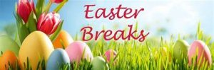 easter availability in northumberland - hadrians wall - hexham - rothbury - hexham - northumberland national park - dog friendly - self catering accommodation