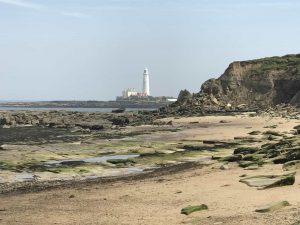 Karen's Kottages - self catering dog friendly holiday cottages in Northumberland - Drakestone Cottage and Stanegate Cottage - seaton sluice
